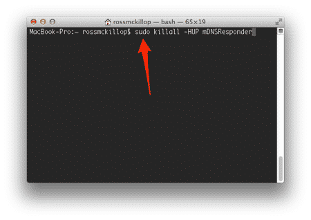Flush DNS in Mac